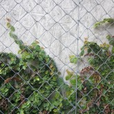 metal mesh wall for green wall growth